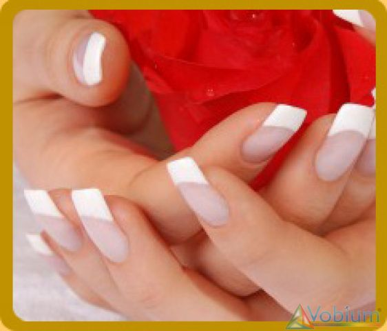 Nail Extension Classes Trainingcoachingtuition Course Neetus