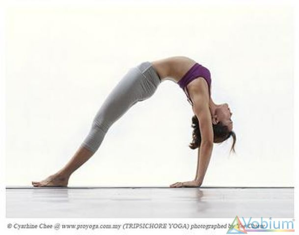 Power Yoga Class - Training/Coaching/Tuition Course in Hyderabad ...